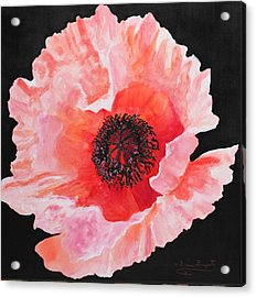 Acrylic Print featuring the painting Poppy Power by M Diane Bonaparte