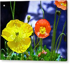 Poppy Series - Soaking Up Sunbeams Acrylic Print by Moon Stumpp