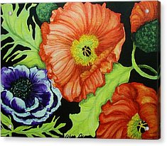 Poppy Surprise Acrylic Print by Diana Dearen