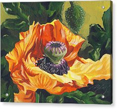 Acrylic Print featuring the painting Poppy With Yellow by Alfred Ng