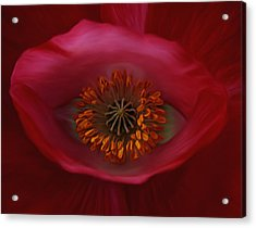 Acrylic Print featuring the photograph Poppy's Eye by Barbara St Jean