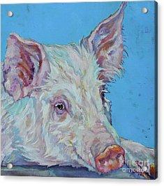 Pork Chop Acrylic Print