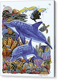 Porpoise Reef Acrylic Print by Carey Chen