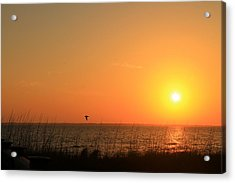 Port St. Joe Sunset Acrylic Print