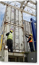 Port Workers Handling Cargo Containers Acrylic Print