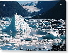 Acrylic Print featuring the photograph Portage In All Her Glory by Judyann Matthews