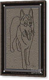 Portrait Of A Friend Poaf02 Acrylic Print by Pemaro
