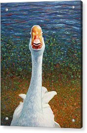 Portrait Of A Goose Acrylic Print by James W Johnson