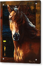 Portrait Of A Horse Acrylic Print by Dragan Petrovic Pavle