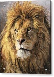 Portrait Of A Lion Acrylic Print by Lucie Bilodeau