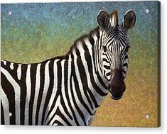 Portrait Of A Zebra Acrylic Print by James W Johnson