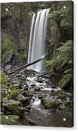 Portrait Of Hopetoun Falls Acrylic Print