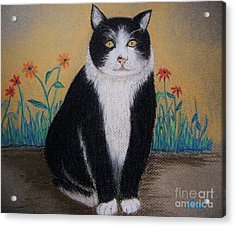 Portrait Of Teddy The Ninja Cat Acrylic Print by Reb Frost