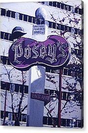 Posey's Acrylic Print by Paul Guyer