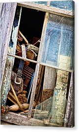 Possible Treasure Acrylic Print by Erika Weber