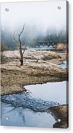 Acrylic Print featuring the photograph Post Apocalyptic Landscape by Trevor Chriss