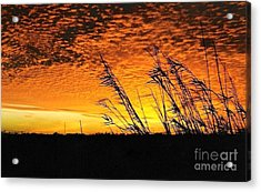 Post Hurricane Rita At Dockside In Beaumont Texas Usa Acrylic Print by Michael Hoard