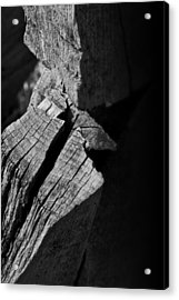 Post Light Acrylic Print by Odd Jeppesen