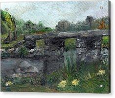 Postbridge Dartmoor Acrylic Print by Carol Rowland