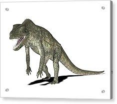 Postosuchus Dinosaur Acrylic Print