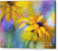 Pot Of Gold Acrylic Print by Tim Gainey