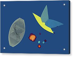Potassium Bitartrate Crystals Acrylic Print