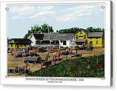 Potato Season At The Onancock Dock - 1900 Acrylic Print by Patrick Belote