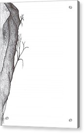 Potentially Climbable Acrylic Print