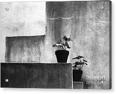 Acrylic Print featuring the photograph Pots by Steven Macanka