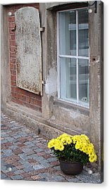 Potted Flowers  Acrylic Print