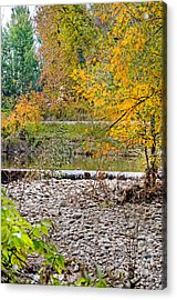 Poudre River-2 Acrylic Print by Baywest Imaging