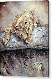 Acrylic Print featuring the painting Pounce by Mary McCullah