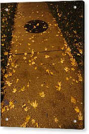 Poured Gold Acrylic Print by Guy Ricketts