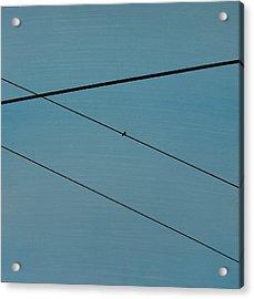 Power Lines 03 Acrylic Print by Ronda Stephens
