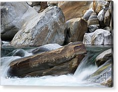 Power Of Nature Acrylic Print by Maurizio Bacciarini
