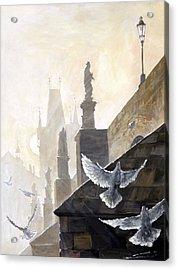 Prague Morning On The Charles Bridge  Acrylic Print by Yuriy Shevchuk