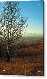 Prairie Autumn 5 Acrylic Print