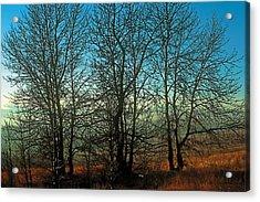 Prairie Autumn Acrylic Print by Terry Reynoldson