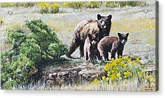 Acrylic Print featuring the painting Prairie Black Bears by Aaron Spong