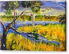Prairie Acrylic Print by Christy Usilton