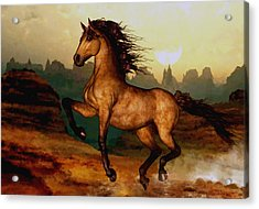 Prairie Dancer Acrylic Print