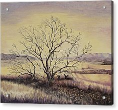 Prairie During The Dry Season Acrylic Print by Gina Gahagan