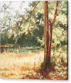 Prairie Light 2 Acrylic Print by Carlynne Hershberger