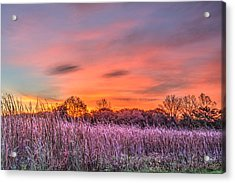 Moraine Hills State Park Moments Before Sunrise Acrylic Print