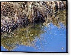 Prairie Stream Acrylic Print