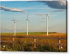 Prairie Wind 2 Acrylic Print