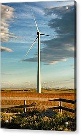 Prairie Wind 4 Acrylic Print