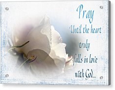 Acrylic Print featuring the photograph Pray For Love by Jean OKeeffe Macro Abundance Art
