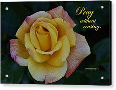 Pray Without Ceasing Acrylic Print by Larry Bishop