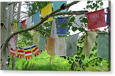 Acrylic Print featuring the photograph Prayer Flags And Aspen by Brenda Pressnall